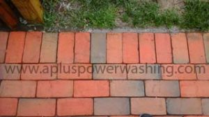cleaned brick pavers