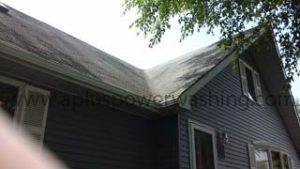 Shingle roof cleaning (before)