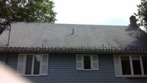 before cleaning shingle roof (back of house)