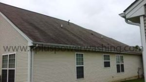 before house siding cleaning
