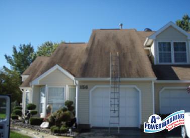 ecofriendly roof washing