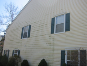 brick siding cleaning services