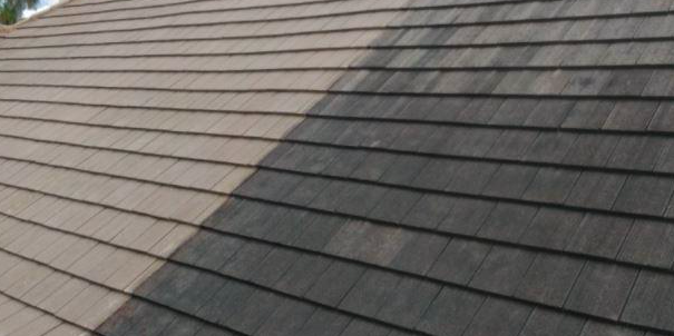 How long will a roof cleaning last?