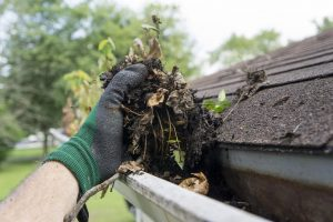 Your Guide to Gutter Cleaning like a Pro