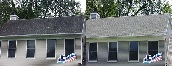 Mercer County Roof Cleaning